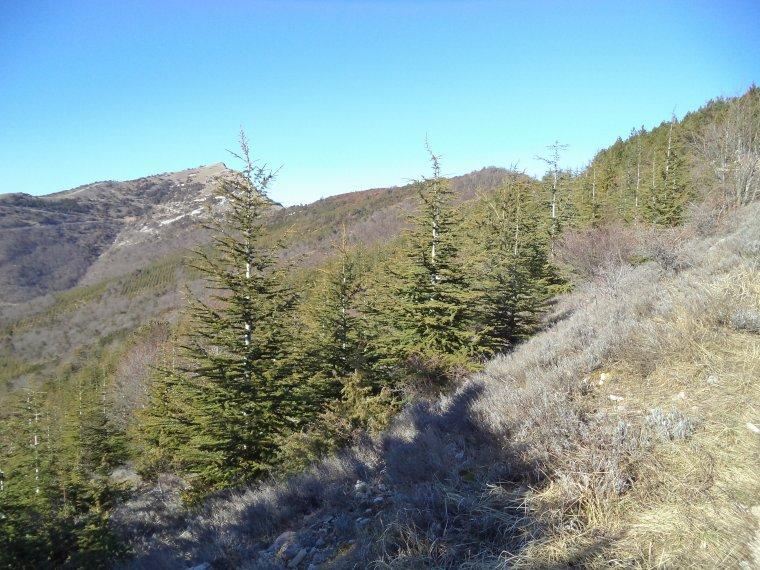 Photos randonnée VTT montagne de la Lance