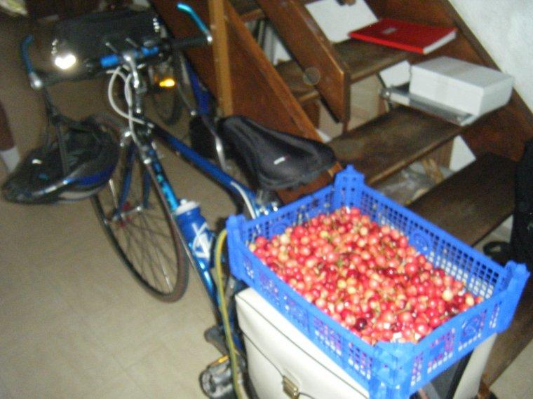 Ma vie à travers le vélo, mon histoire