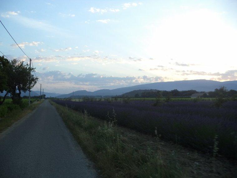 4e journée de travail au domaine de serre des vignes + vélo