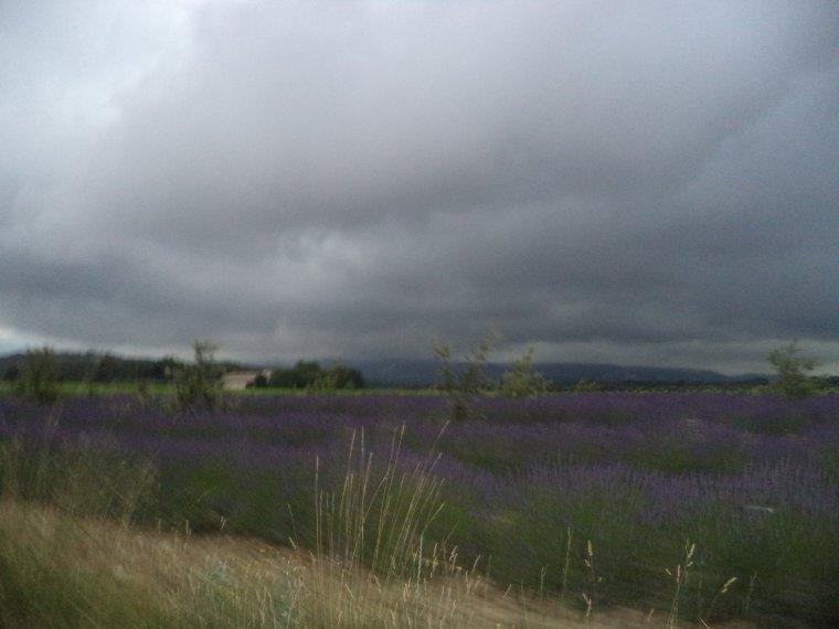 7e journée de travail ou presque, trajet sous la pluie et...la grêle......