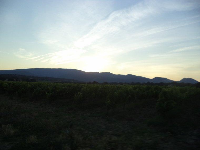 7e journée de travail au domaine de serre des vignes + vélo