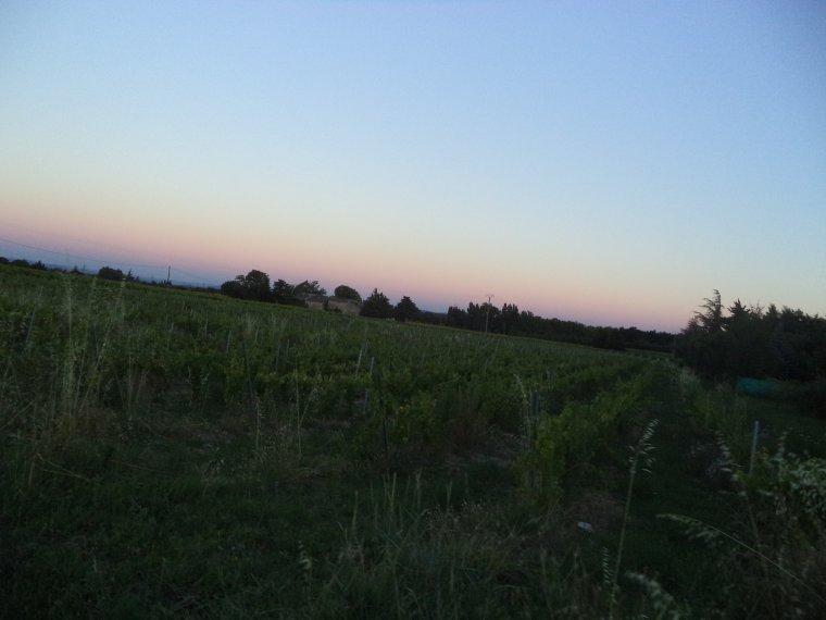 dernière journée de travail au serre des vignes