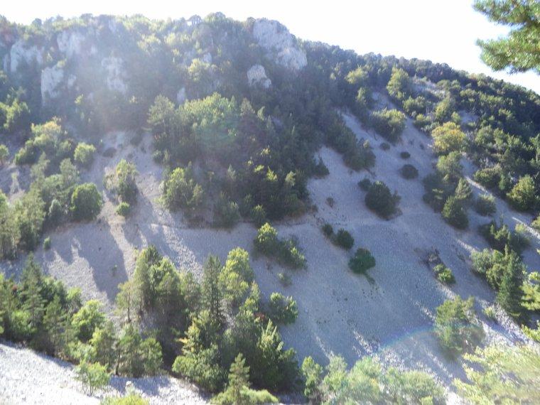 Descente du Mont Ventoux en VTT avec Joris !  Quel régal ;)  photos (2)