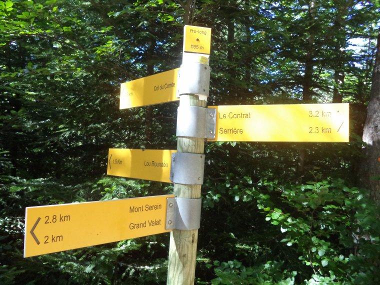 Descente du Mont Ventoux en VTT avec Joris !  Quel régal ;)  photos (3)