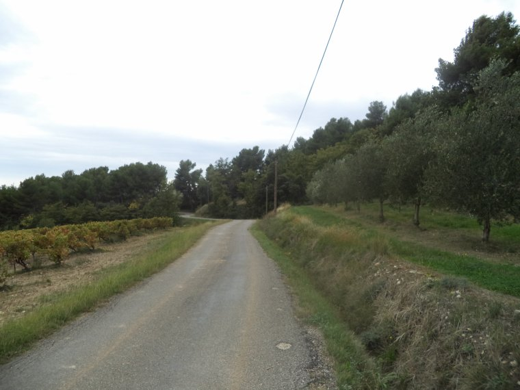 Mon premier Rallye à vélo : le Rallye des Cotes du Rhône à Montbrison sur Lez !