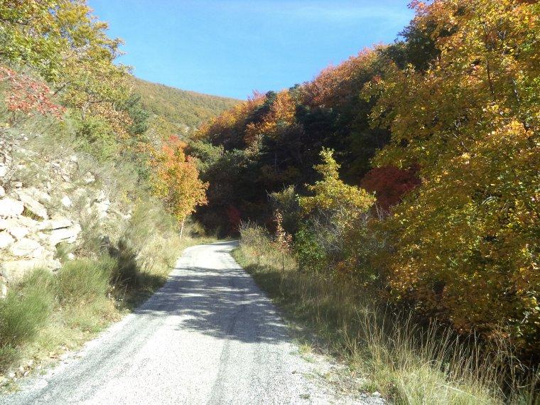 Grande randonnée à VTT en Drome Provençale, +2 cols