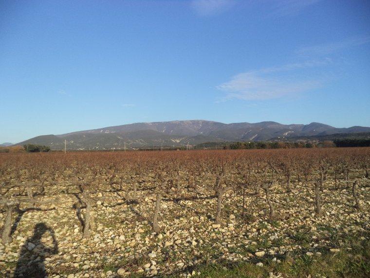 Balade à VTT au bord du Lez et en campagne, 35km (photos 3)
