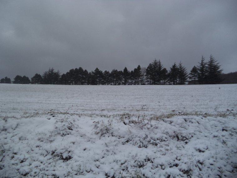 En vélo à Comps sous une tempête de neige !   -12°C !!! 66km (photos 5)