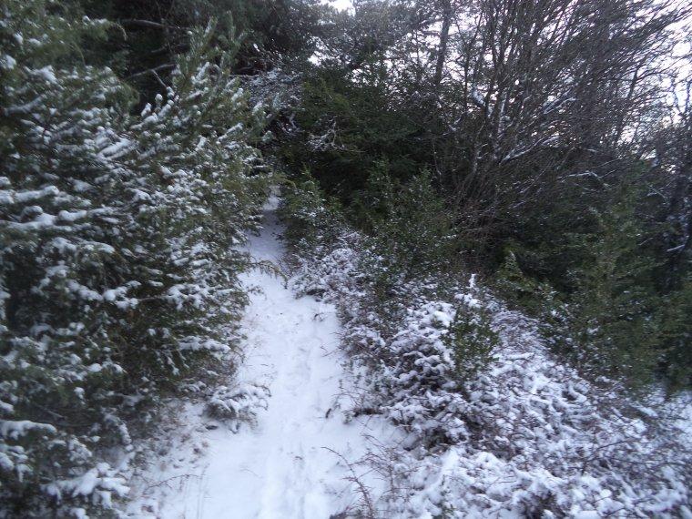 Grande randonnée seul à la montagne de la Lance !  neige, vent, brouillard, -22°C et 15 kilomètres (photos 6)