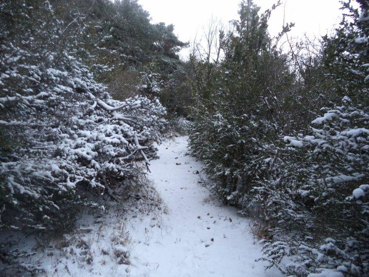 Grande randonnée seul à la montagne de la Lance !  neige, vent, brouillard, -22°C et 15 kilomètres (photos 7)