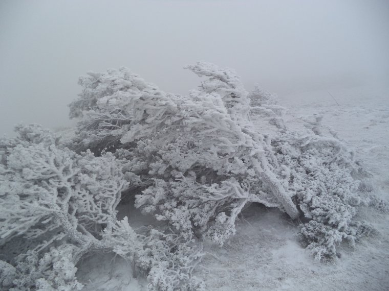 Grande randonnée seul à la montagne de la Lance !  neige, vent, brouillard, -22°C et 15 kilomètres (photos 11)