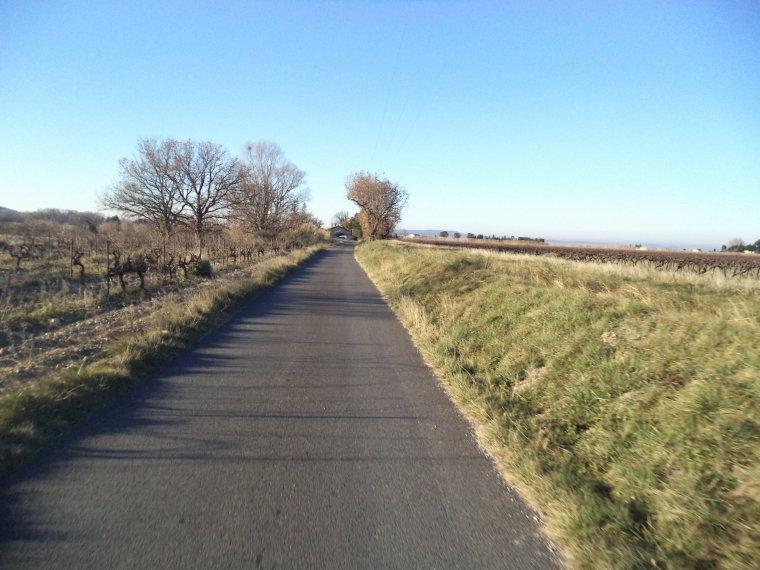 Balade en campagne dans la fraîcheur matinale, 42km, (photos 2)