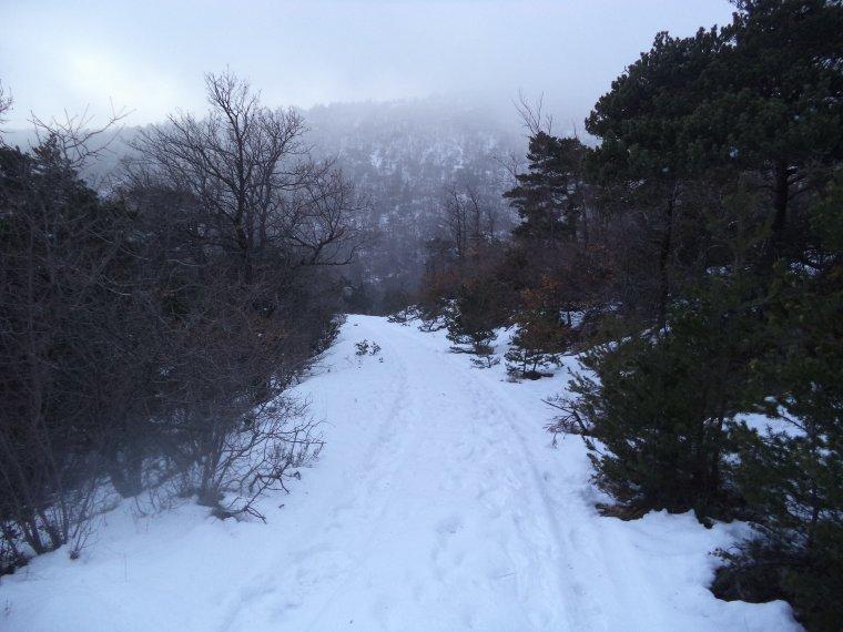 Randonnée à la montagne de la Lance avec 50cm de neige, -18°C de ressentie, du givre, blizzard....11km