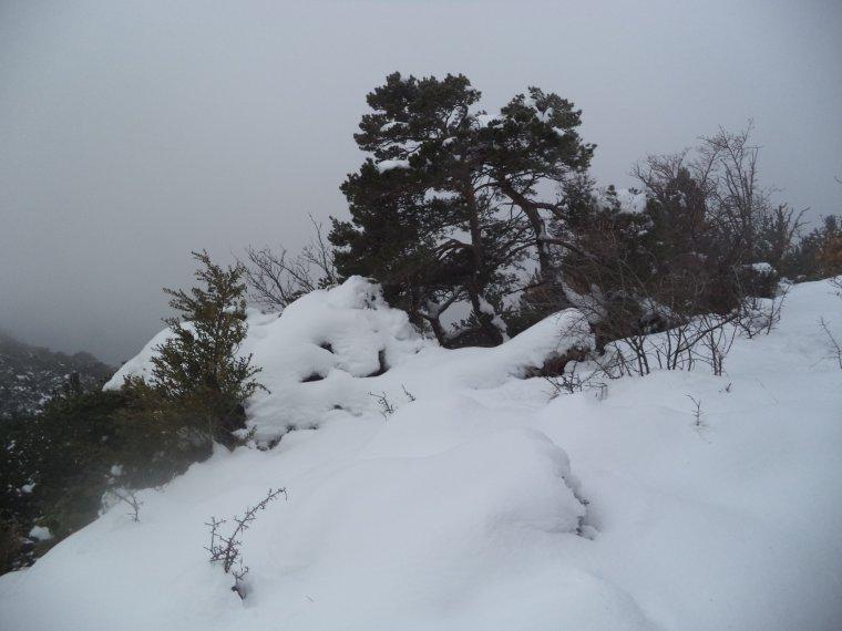 Randonnée à la montagne de la Lance avec 50cm de neige, -18°C de ressentie, du givre, blizzard....11km (photos 3)