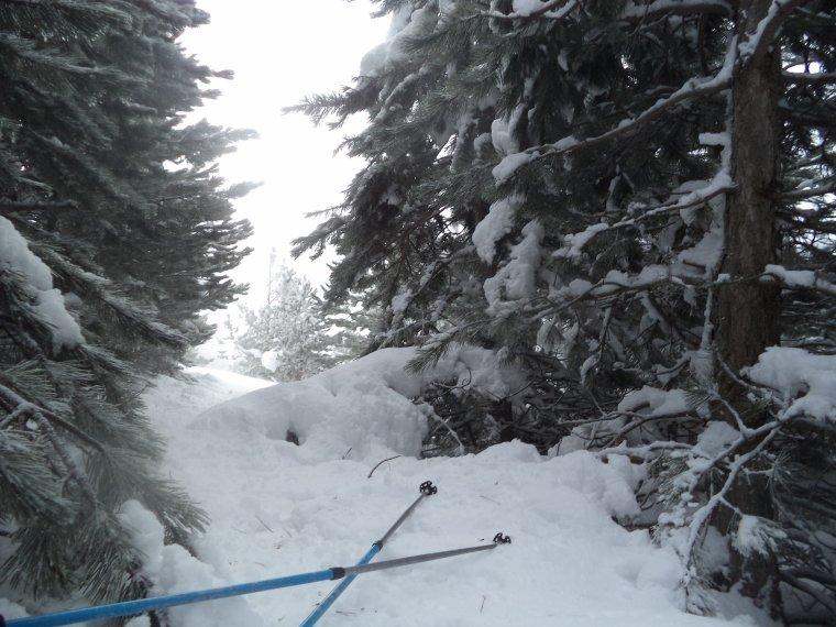 Randonnée à la montagne de la Lance avec 50cm de neige, -18°C de ressentie, du givre, blizzard....11km (photos 6)