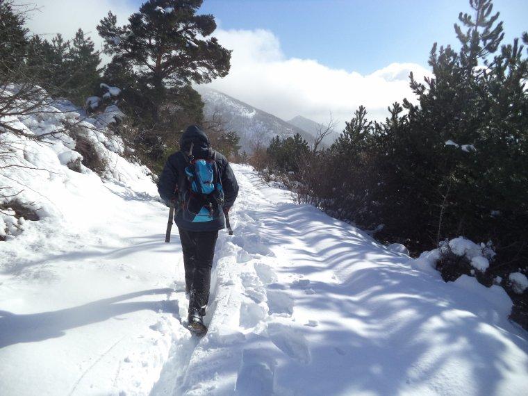 Randonnée à la montagne de la Lance avec 50cm de neige, -18°C de ressentie, du givre, blizzard....11km (photos 8)