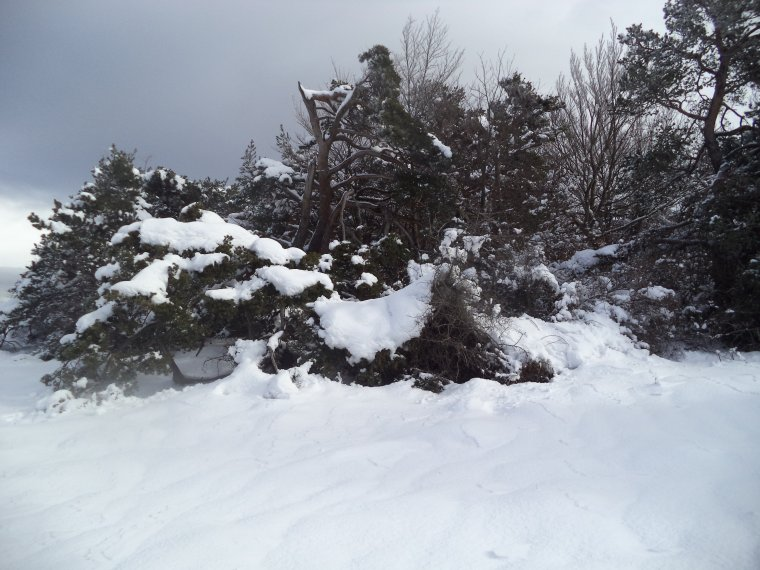 Randonnée en raquette à neige à la Lance avec maman, 60cm de neige, -13°C (photos 6)