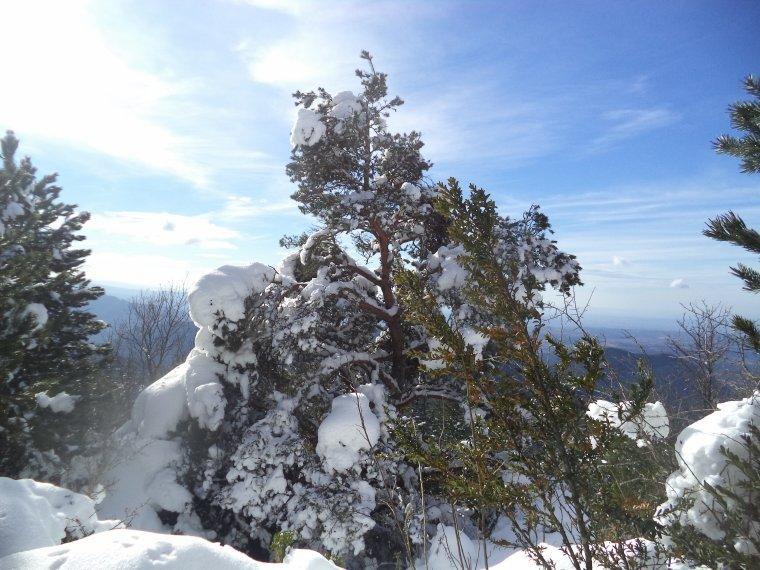 Grande randonnée au Cougoir (1221m) avec 1 mètres de neige !!! (photos 6)