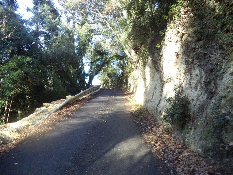 Balade à vélo à Piégon, photos (2)