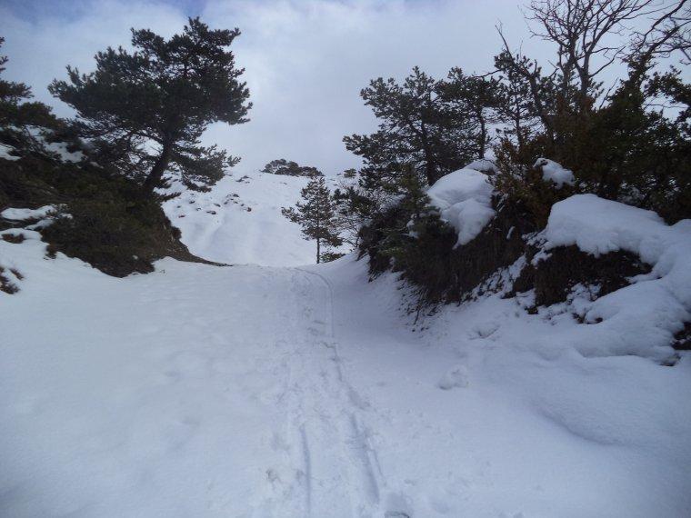 Randonnée à la montagne de la croix avec 30cm de neige et sous la neige ! (photos 4)