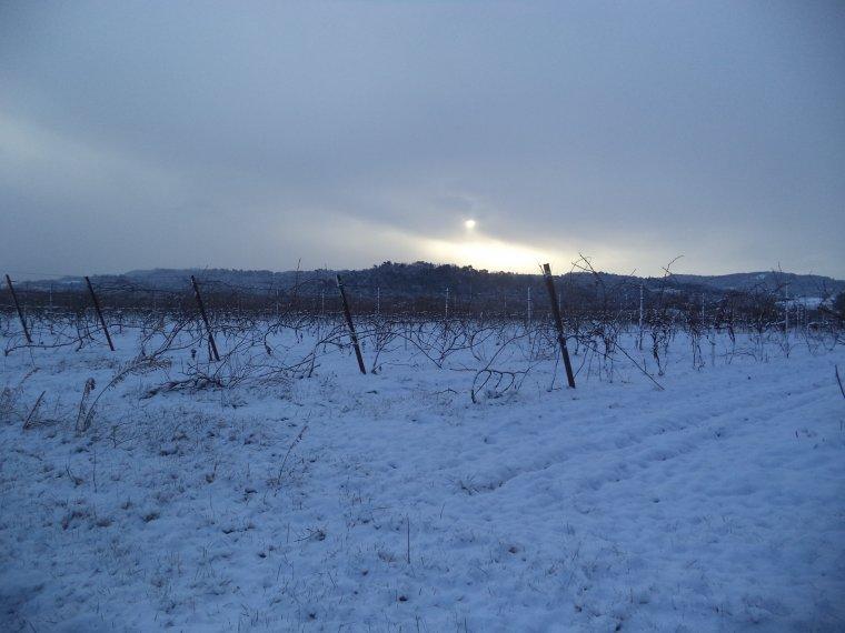 45 kilomètres à VTT sur la Neige ! neige en plaine sur la vallée du Rhone, photos (2)