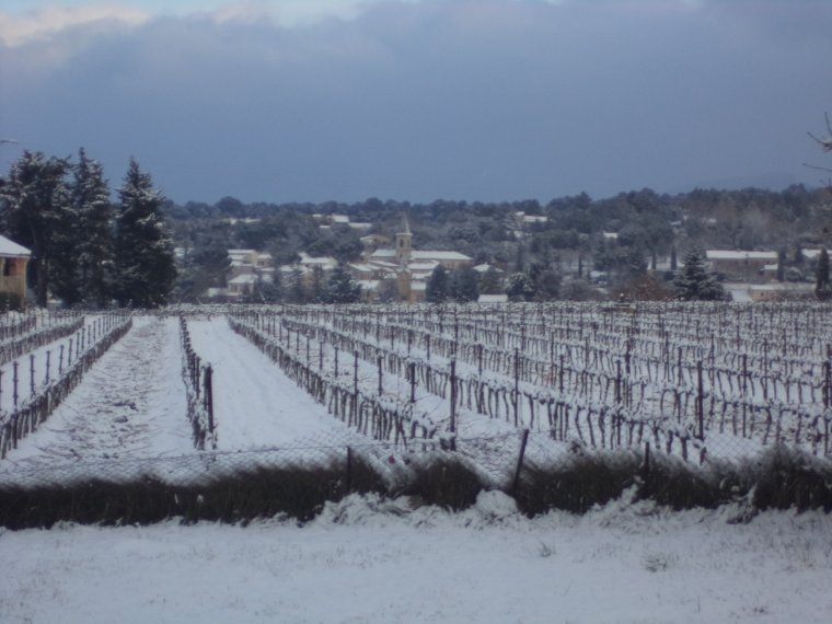 45 kilomètres à VTT sur la Neige ! neige en plaine sur la vallée du Rhone, photos (3)