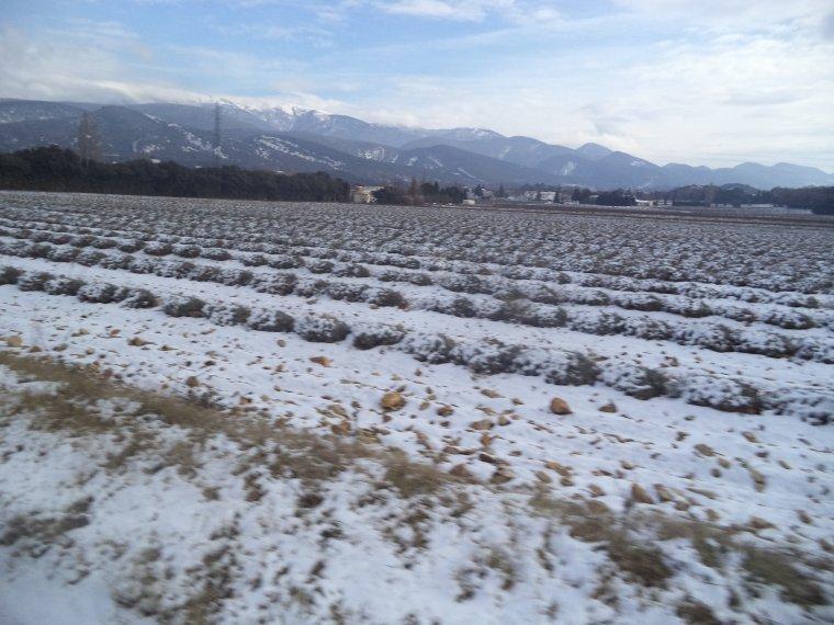 45 kilomètres à VTT sur la Neige ! neige en plaine sur la vallée du Rhone, photos (9)