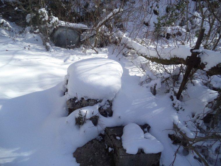 Randonnée en raquette à neige à la ferme de la Lance avec maman