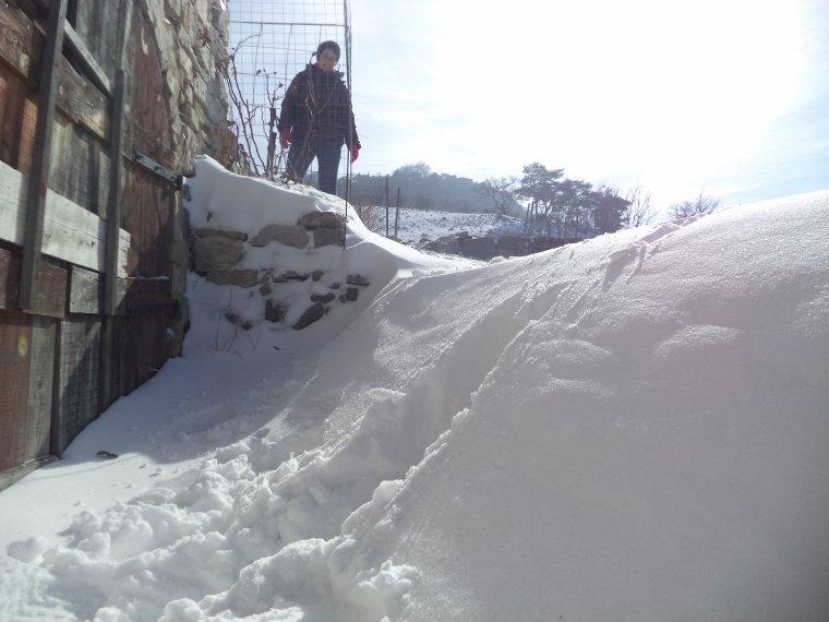 Randonnée en raquette à neige à la ferme de la Lance avec maman, photos (2)