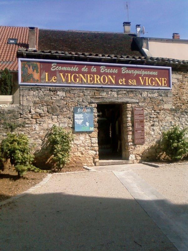 Ecomusée de la Vigne