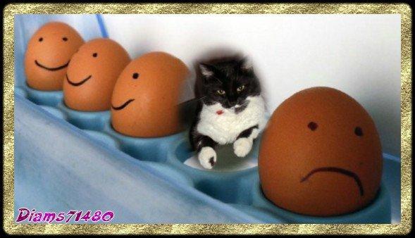 :D C'est la semaine de Pâques!  $)
