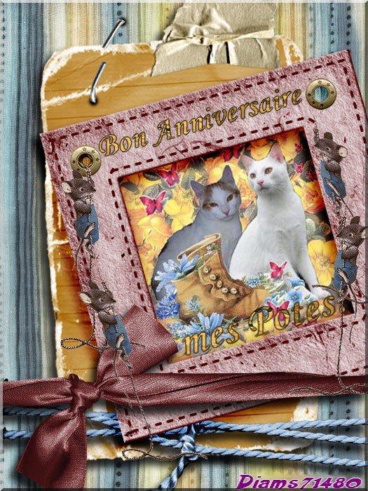 Pour Filou qui a eu le coryza en cadeau d'anniversaire (l) (u) (l)  Bon anniversaire Filou et Speedy (l) (u) (l)