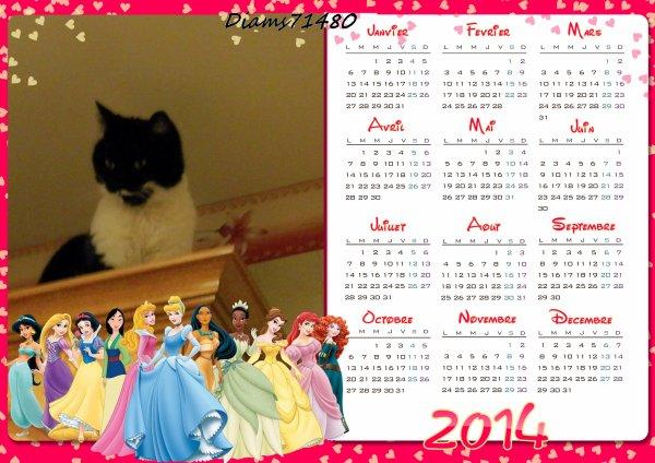 La nouvelle année 2014 avec moi! (u)