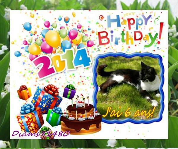 J'ai 6 ans aujourd'hui! (u) Bon anniversaire Diam's (u)