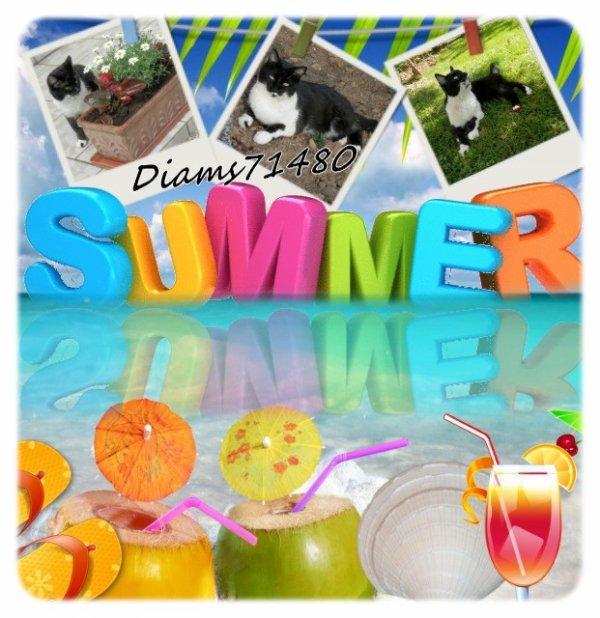 Il fait chaud déjà début juin, un air d'été... ;)