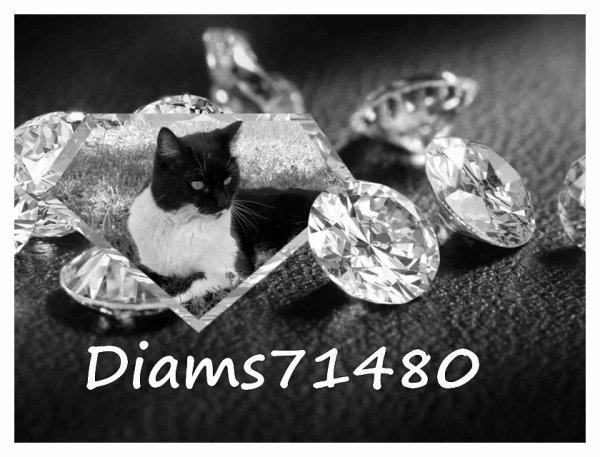 Je m'appelle Diam's comme le Diamant offert à Sylvie pour la Fête des Mères en 2008  $)