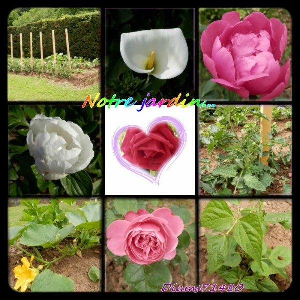 Il fait beau, il fait chaud! Je vais au jardin souvent! Suivez-moi..... ;)