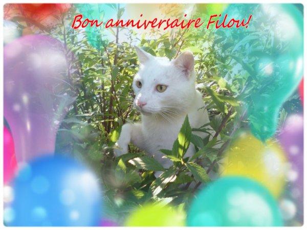 Bon anniversaire Filou et Speedy ....en retard! Ch'amitiés (l) et gros poutous! (l)