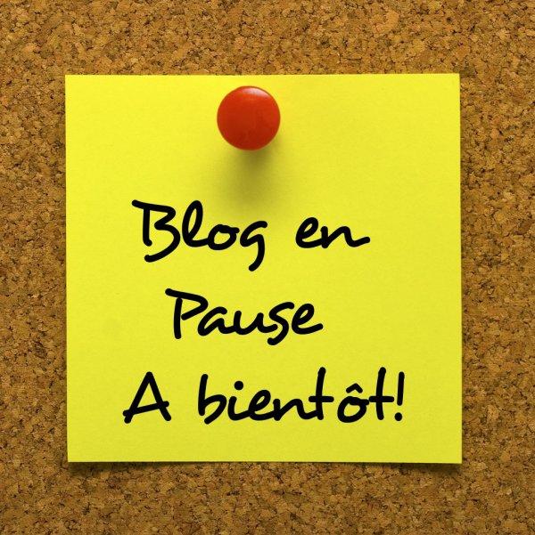 Blog en pause pour quelques semaines .....