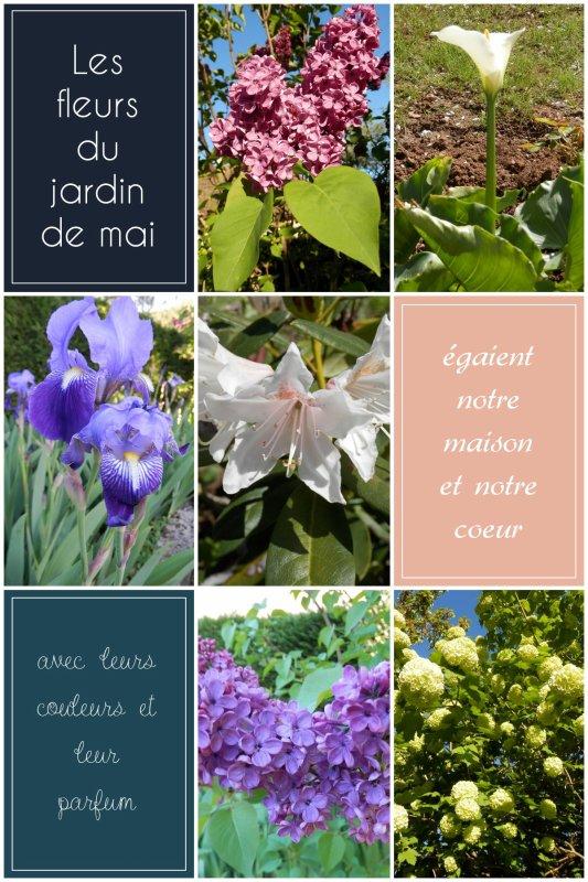 Mai et les fleurs du jardin! RhoooOoooo! ;)