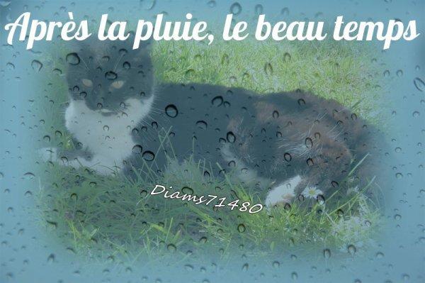 Il pleut alors on s'occupe! RhoooOOooo! :)