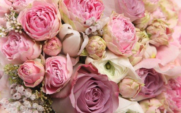 Bonne Fête des Mères à toutes les Mamans!