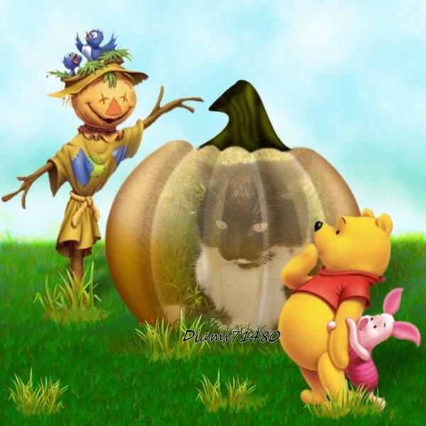 C'est l'automne! Fait pas bien chaud! Grrr! :( :( :(