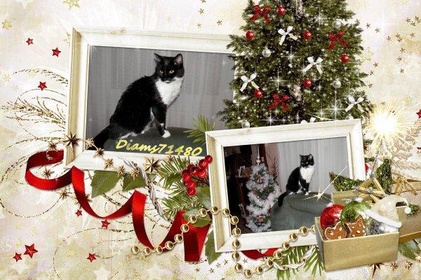 Bientôt Noël, il fait bien froid.... et je reste au chaud près de la cheminée ;)