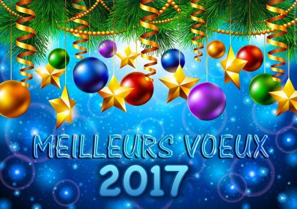 Bonne année 2017 les ch'amis!