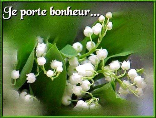 Le Muguet la fleur du mois de mai et qui porte Bonheur! ;)