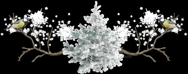 L'hiver est là :( la neige est annoncée ces jours! :(