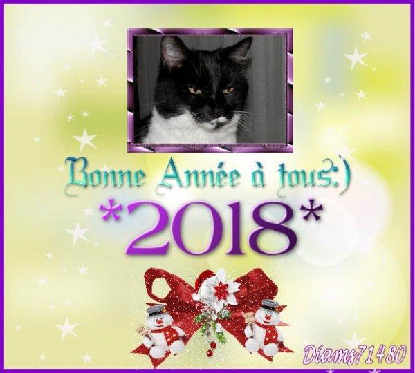 (u) Meilleurs Voeux pour la nouvelle année ! (u)