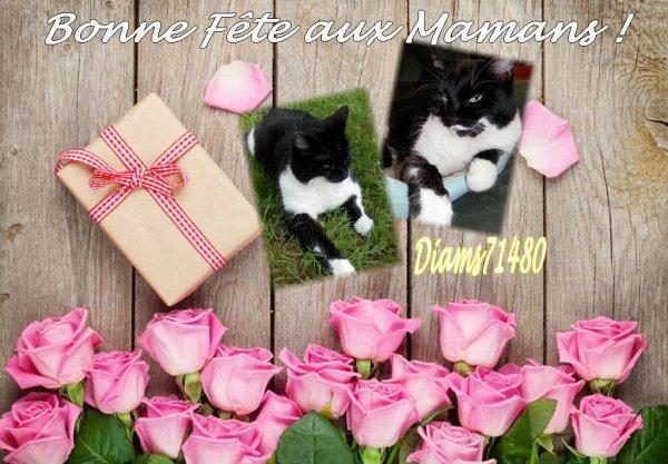 (u) C'est la Fête des Mamans! Bonne Fête à ma Maman Sylvie et aux autres! (u)