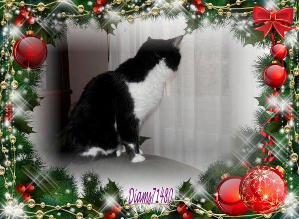Noël, Joyeux Noël! (u)